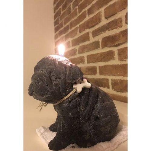 candela-profumata-bulldog